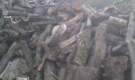 Seasoned unsplit softwood for firepit, stove or chiminea