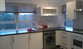 Bright and Spacious 3 bedroom flat in good location near Cumbernauld Town Centre. (Ivanhoe Road)
