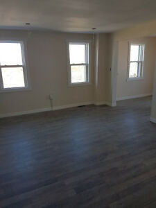 ***NEWLY RENOVATED BRIGHT AIRY MODERN APARTMENT FOR RENT***