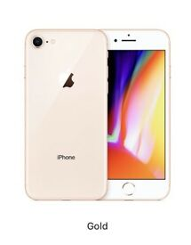 IPhone 8 Gold 64 GB