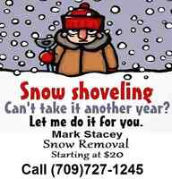Snow Removal, Snowblower, Shoveling