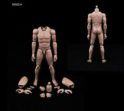 ZY TOYS 1//6 Scale Narrow Shoulder Male African Figure For TTM18 TTM19 ❶USA❶