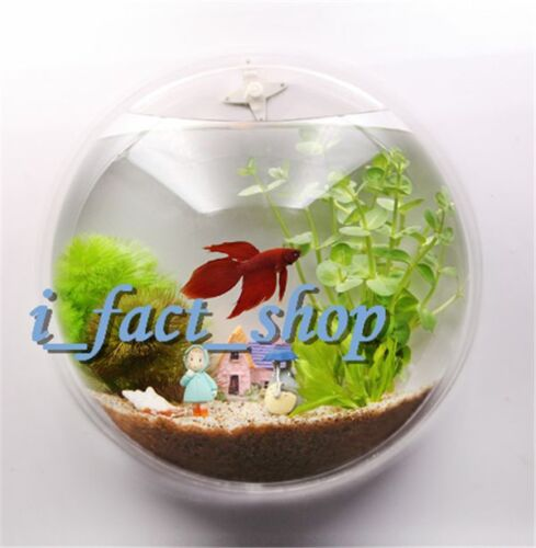 1x Fish Wall Mounted Bowl/Aquarium Wall Hanging Tank/ Plant Decoration Pot IFA