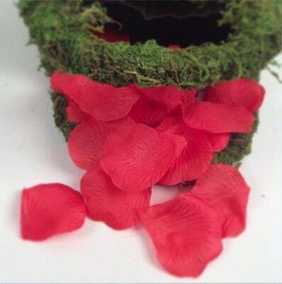 600 Silk Rose Petals Wedding Party Quinceanera Bridal Supplies Decorations