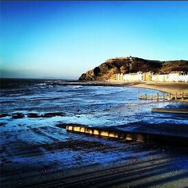 Two attractive single rooms in shared house right by the sea in central Aberystwyth