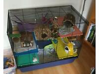 Rat, Hamster, Mice, Rodent Cage
