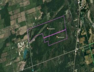 262 Acres of Prime Land Near Keswick (For Sale!)