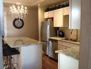 Beautiful Furnished and Renovated Home for Rent