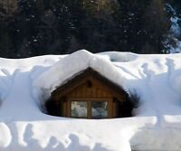 Roof snow removal... Insured company