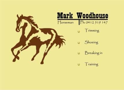 Horseman - Mark Woodhouse