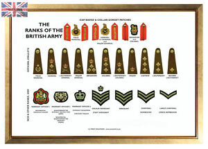 Uk armed forces rank insignia