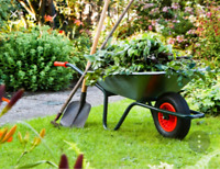 YOUR QUALITY YARD CLEAN UP