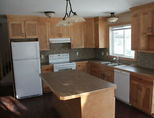 New 3 Bedroom Condo for Rent in Peace River