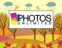 Beautiful farm to be used as a backdrop for fall portraits!