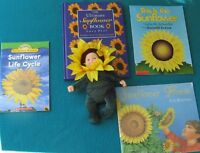 Sunflower books for the Primary Reader & Baby Sunflower Geddes