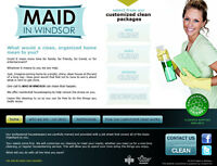 Spring Cleaning--by Maid in Windsor--Maids Maintenance and More!