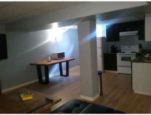 1 Bdrm Basement Suite, TV, internet, & utilities inc., Lower Col