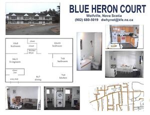 Student Units Blue Heron Court