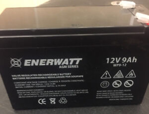 12 Volt 9 AH Batteries