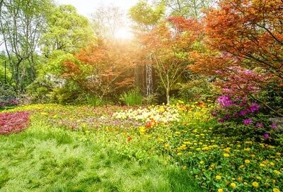 Vinyl 5x3FT Photo Backdrop Spring Garden All Things Recovery Photography
