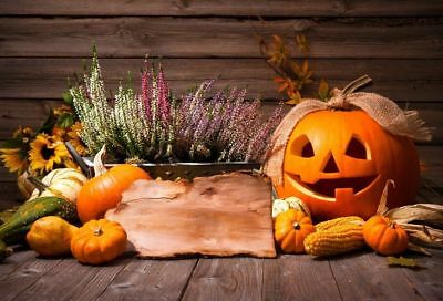 Cute Halloween Background (Halloween Cute Pumpkin Backdrops Studio Props Photography Screen Background)