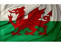The true story of the welsh flag Daniel and the Bible Doubles prophecy