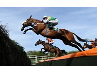 Grand National Day & Ladies Day Tickets