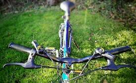 Manhattan Falcon bike