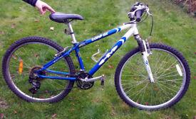 Woman's/Teenager's Mountain Bike