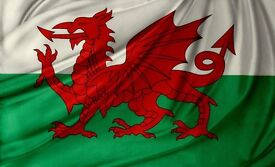 The true story of the Welsh flag Daniel and the Bible Doubles
