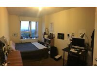 Spacious Double Room in Swiss Cottage lovely flat