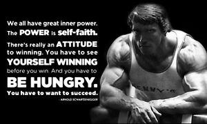 Arnold Schwarzenegger Bodybuilding Silk Cloth Poster 40 x 24