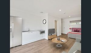 Brand new self-contained studio with private court yard! Rosebud Mornington Peninsula Preview