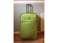 Large bright green Fergi frog suitcase