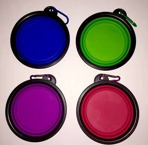 Collapsible Pet Travel Bowls Carlisle Victoria Park Area Preview