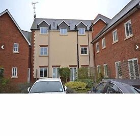 Large Double Room- Ground Floor Property- Central Chelmsford- 12 Minutes to Station