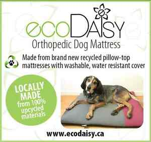 eco Orthopedic Dog Mattresses Kingston Kingston Area image 8