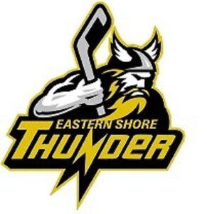 Immediate need for Eastern Shore Thunder Junior C coaches