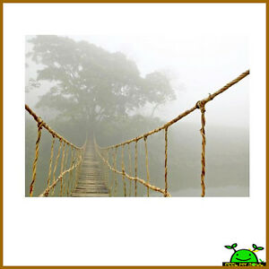 Ikea-Jungle-Journey-Wall-Decor-Picture-Poster-Photo-Canvas-New