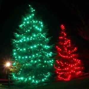 Holiday Lighting and Decorations Design and Installation Kitchener / Waterloo Kitchener Area image 4