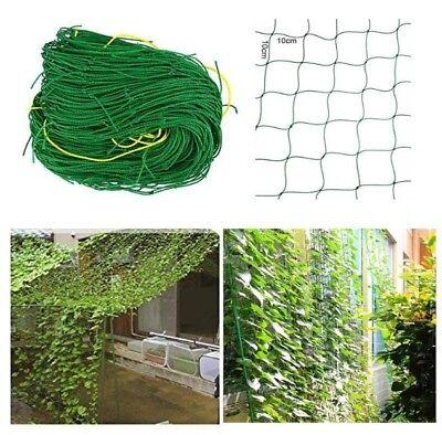 Pflanzennetz Ranknetz Rankhilfe Gartennetz Stütznetz für Kletterpflanzen wählbar