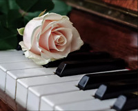 Live Pianist for Weddings and Events!