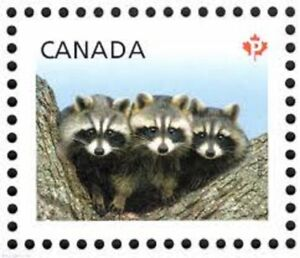 600 canadian permanent postage stamps - brand new