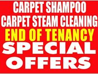 professional carpet cleaning two rooms deep cleaned £15 each