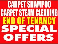 professional carpet cleaning two rooms only £30
