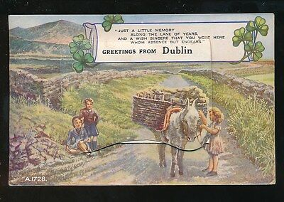 Ireland Leinster Greetings from DUBLIN Novelty Pocket m/view c1920s PPC