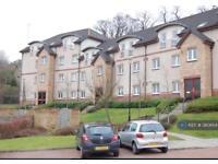 2 bedroom flat in Stoneside Drive, Glasgow, G43 (2 bed)
