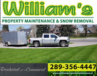 Commercial lawn care / snow clearing