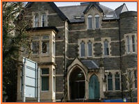 (Cardiff - CF11) Office Space to Rent - Serviced Offices Cardiff