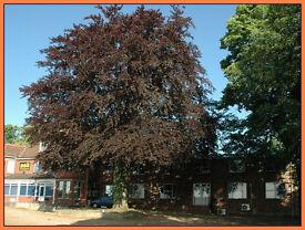 (Bury St Edmunds - IP32) Office Space to Rent - Serviced Offices Bury St Edmunds